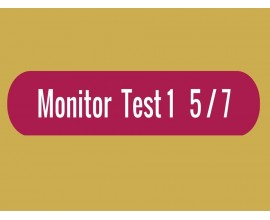 Monitor - Test 1