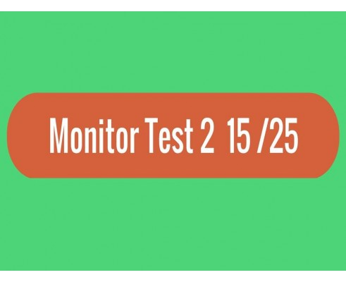 Monitor - Test 2